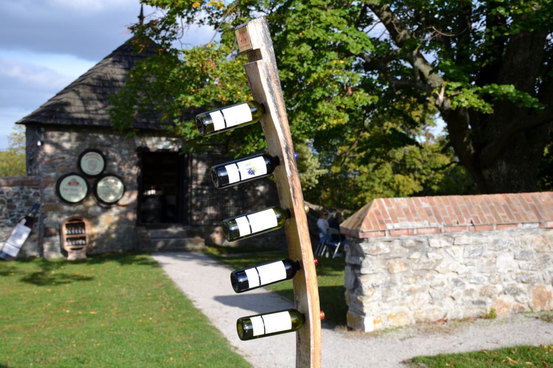 strada del vino dei piccoli carpazi