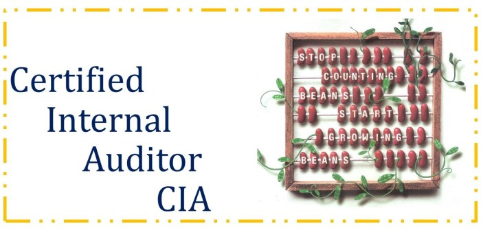 Certified Internal Auditor (CIA) - Parts I, II & III 1