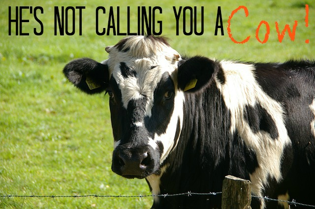 He's Not Calling You a Cow!