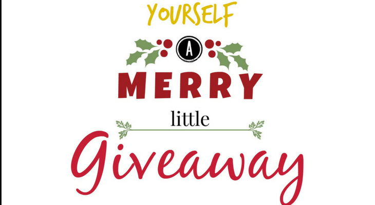 Have Yourself a Merry Little Giveaway Hop