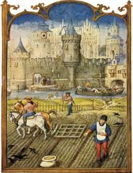 peasants medieval ages middle period way feudal feudalism manor farming serfs working estate lord peasant england times food during did