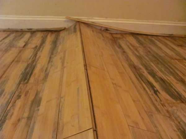 cork flooring in kitchen farm table repair shop located anaheim serving all orange ...