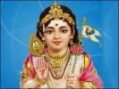 Lord Kartikeya