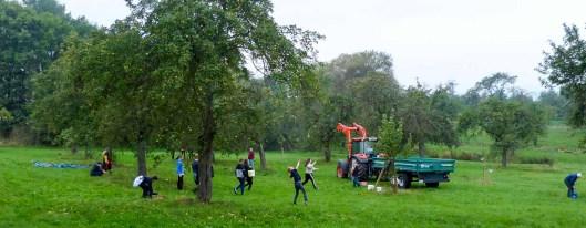 Apfelfest im Rittergut 2021