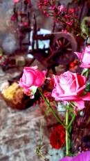 Box_3-Floristin - Sandy Fußwinkel-Wolle & Naturwaren-Fotos TRIAS Gymnasium Elsterberg