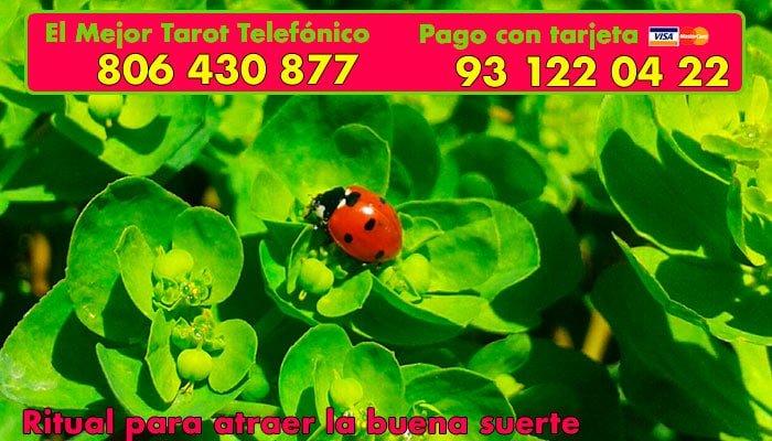 Ritual Para Atraer La Suerte Beautiful Facebook With