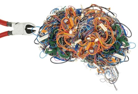 Wired Brain
