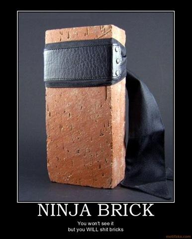 ninja-brick-shit-bricks-ninja-demotivational-poster-1233602361
