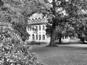 Tannenfeld23