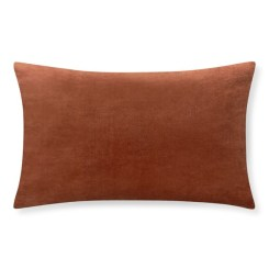 Williams Sonoma Home Velvet Lumbar Pillow, Terracotta