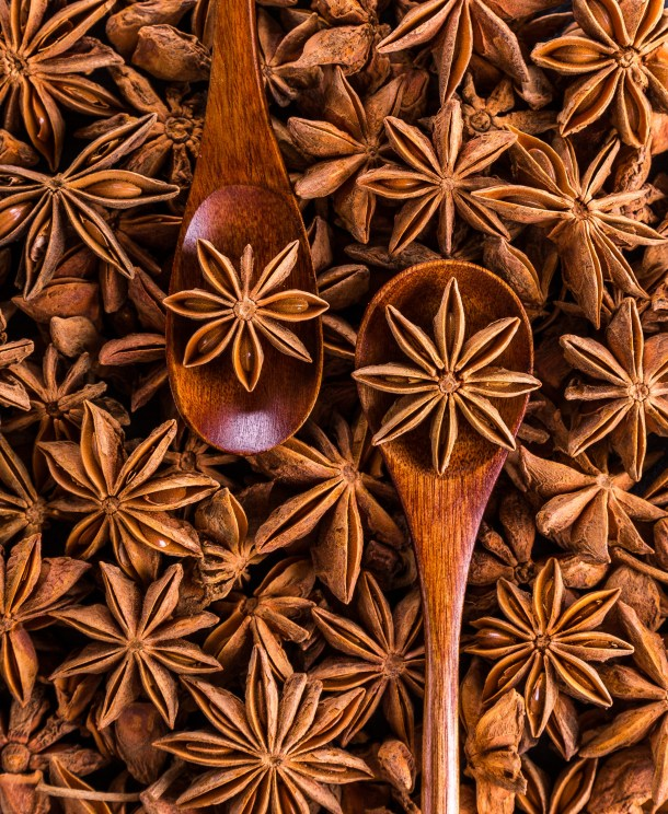 anise-spices-seeds-sprockets-247113