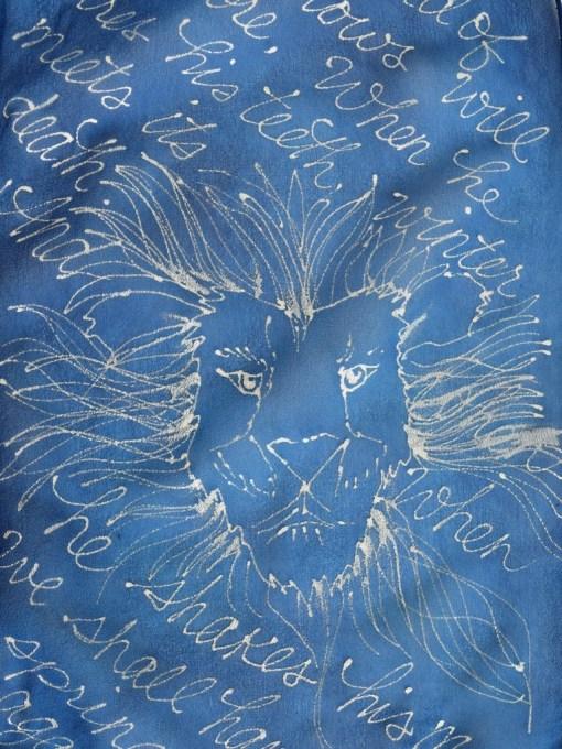 Blue Aslan Book Scarf Face
