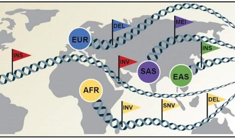 64 개의 인간 게놈, 글로벌 유전 적 다양성의 새로운 기준