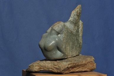 Métamorphose - sirène - femme poisson de Dominique Rivaux