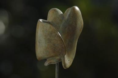 colombe symbolisant la paix de Dominique Rivaux
