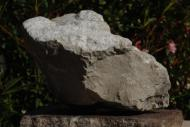 Taurillon en pierre d'Antoger