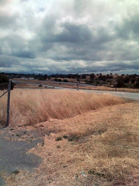 View from the top of Sandhill Road towards 280 and Palo Alto
