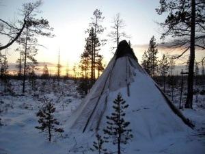 выживание зимой