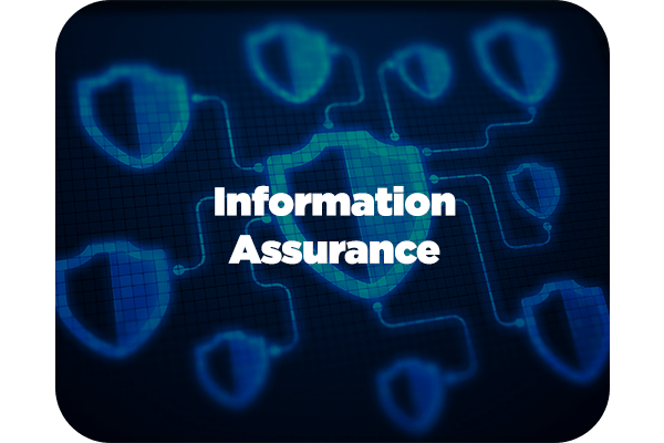 Rivera Federal IT Services - Information Assurance