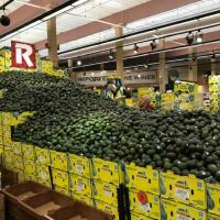 Uptown Rouses Attempts To Break Guinness World Record For Largest-Ever Avocado Display
