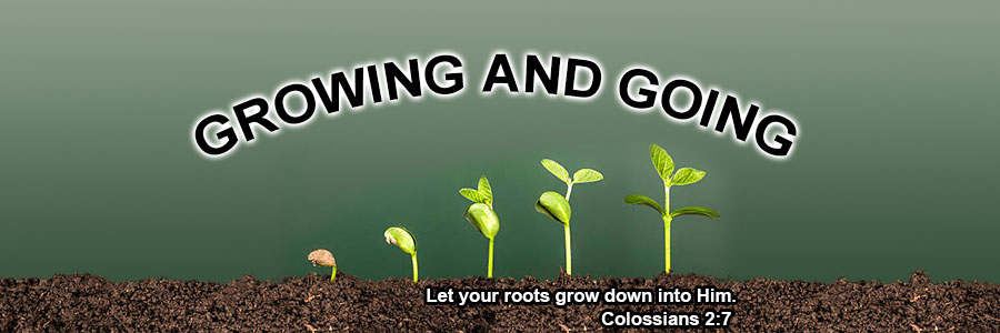 Going and Growing Sermon Series
