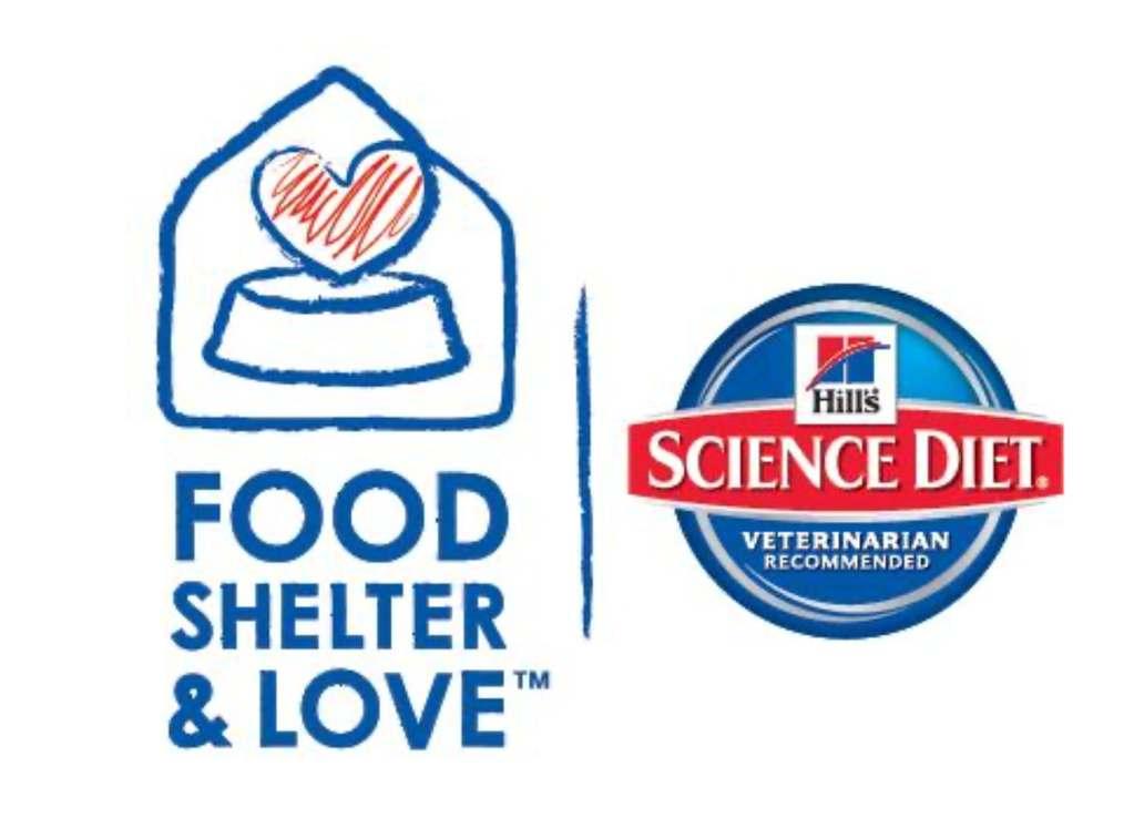 Hills Food Shelter