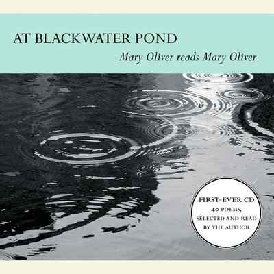 At Blackwater Pond audiobook