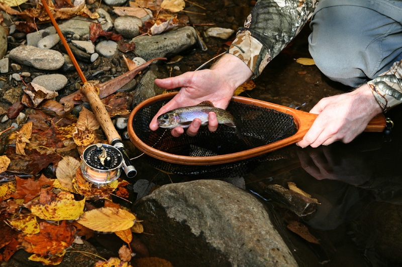 How-To-Pick-The-Best-Fly-Fishing-Net