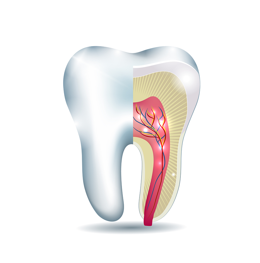 Visit Dental Clinic For Teeth Whitening Or Dental Implants Endodontics Amp Root Canals Toms River Nj Riverfront
