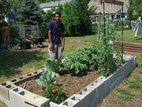 2013 0622 garden cinder blocks3