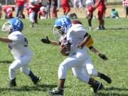 2013 0824 pal football