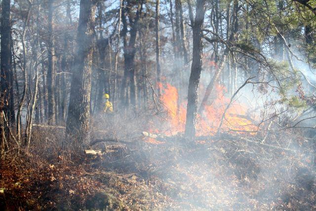 2014 0326 brush fire 2