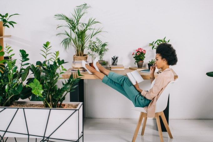 indoor-plants-office-relaxed worker