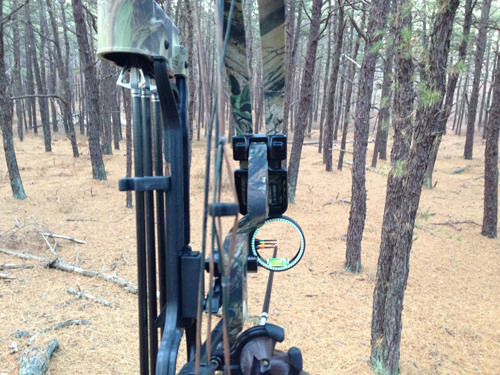 A proposal to allow bowhunting on county property by non-Suffolk residents was recently withdrawn. (Credit: Joseph Pinciaro)