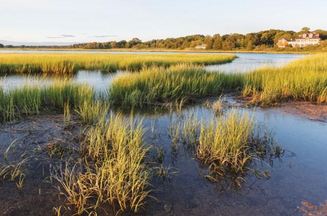 A view of West Creek in New Suffolk. (Credit: Katharine Schroeder)
