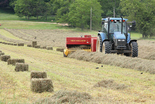 BARBARAELLEN KOCH FILE PHOTO | Aquebogue farmer Donald McKay cutting a field of hay recently on Sound Avenue in Riverhead. The hay is sprayed with citric acid to prevent mold from growing.