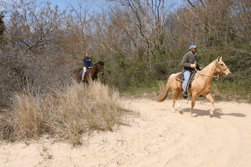 East End Livestock and Horsemen's Association members take trail rides in the spring and fall each year after getting permission from the state parks department. (Credit: Barbaraellen Koch, file)
