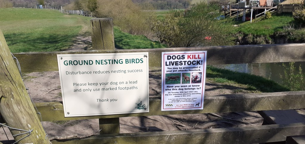 Riverside Walk - please take note of any signs along the way.