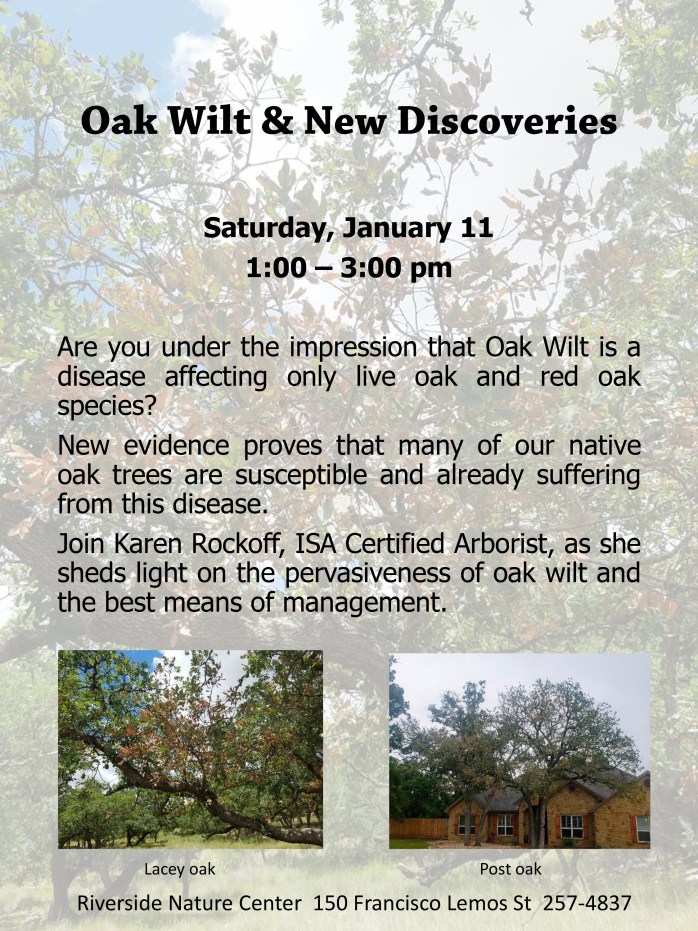Oak Wilt & New Discoveries