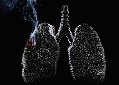 adesf_lung.thumbnail