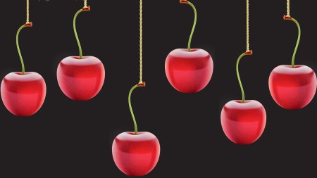 cherrypick xmas3