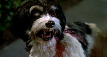 night_of_the_creeps_zombie_dog