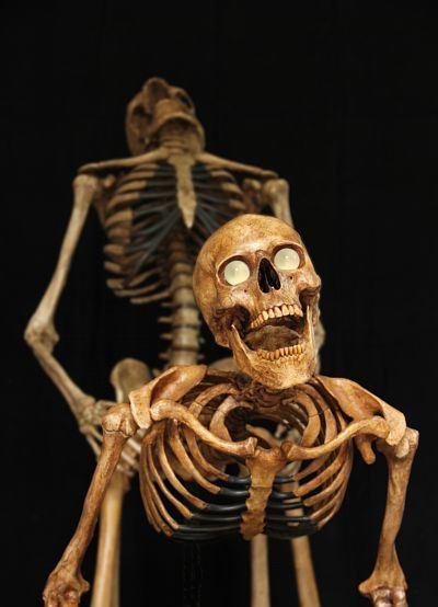 erotic-skeleton_8144_8136_1