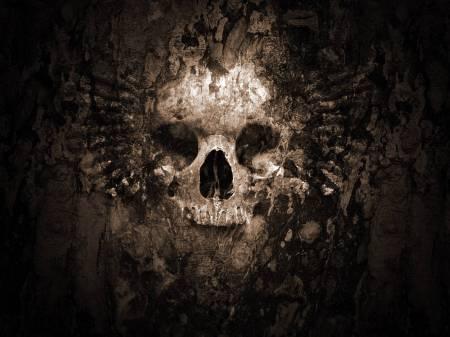 terrifying-skull