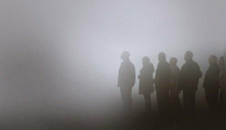 the-mist-crop-1