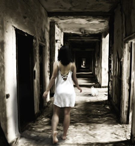 Nocturnal_Saunter__Follow_Me_by_edubz02