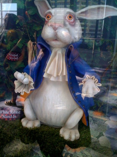 AW_white-rabbit09-9-10