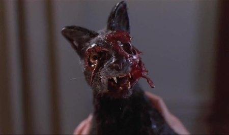night-of-the-creeps-cat