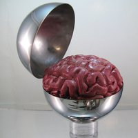 brain_sphere_by_phanattic-d49sqyl