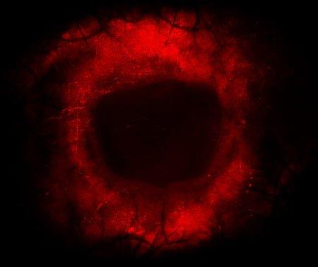red_eye_stuff_by_jan222-d64n359